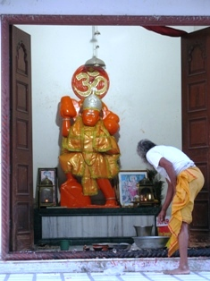 monkey temple1