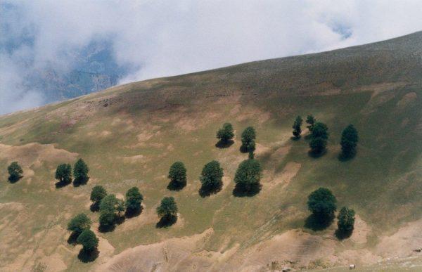 مسیر پیاده روی طارم – ماسوله