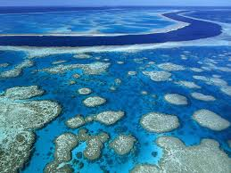great-barrier-reef5