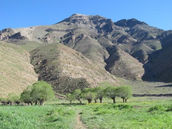 برنامه 9505: پیاده روی از روستای افجه به دشت هویج