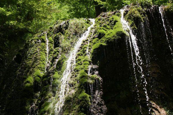گزارش سفر به منطقه هزار جریب آبشار اسپه او 15تا 17 اردیبهشت 95