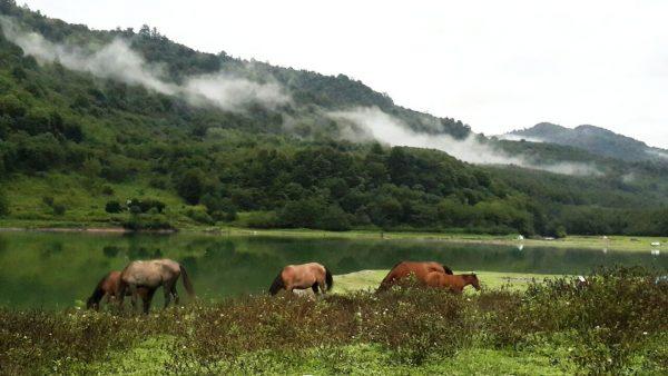 گزارش سفر به آلاشت،آبشار گزو و دریاچه لفور مرداد 95