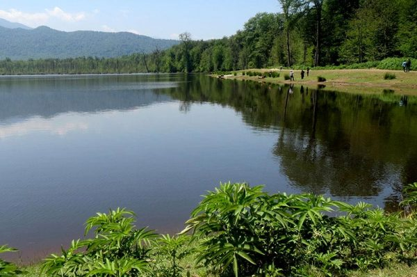 برنامه ۹۵۱۴ : دریاچه الندان و پیاده روی در جنگل پاییزی منطقه
