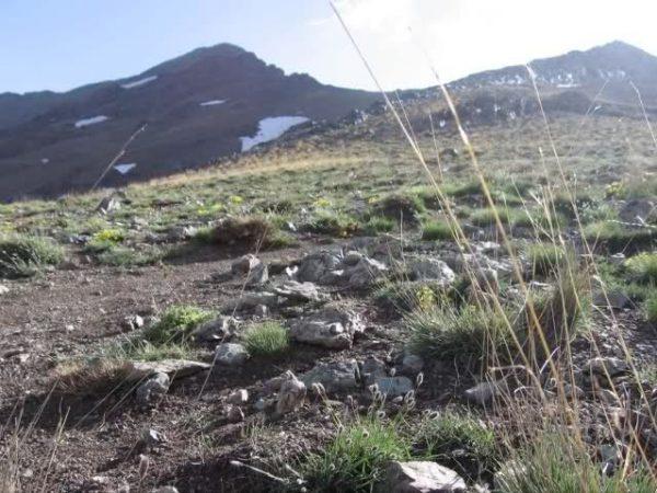 برنامه 9604: صعود به قله کلون بستک