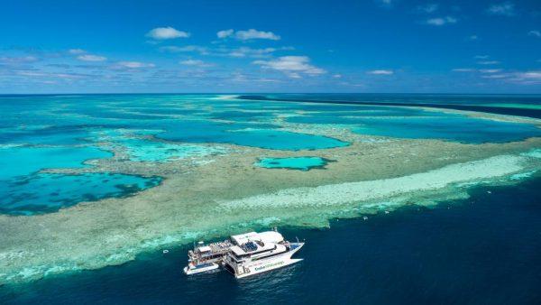 سد بزرگ مرجانی