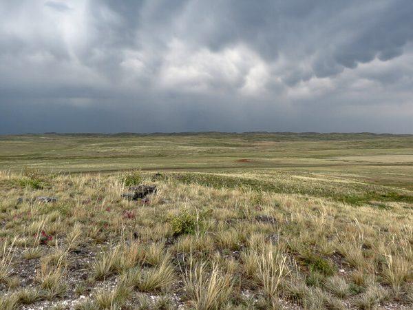ساری آرقا- جلگه و دریاچه های شمال قزاقستان