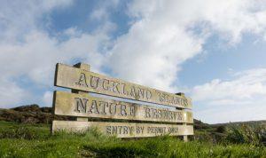 جزایر نیوزلندی مجاور قطب جنوب