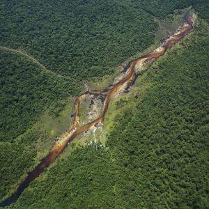 پارک ملی سالونگا